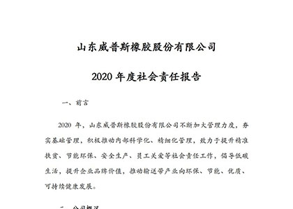 2020年度社会责任报告